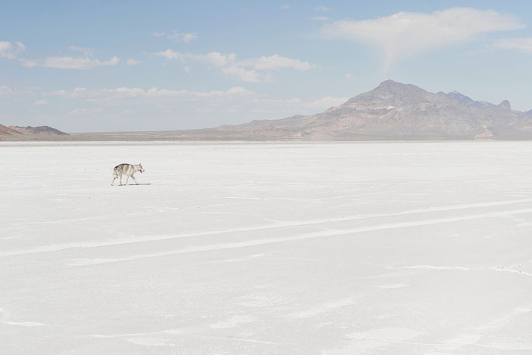 Apollo_Salt_Flats_Web